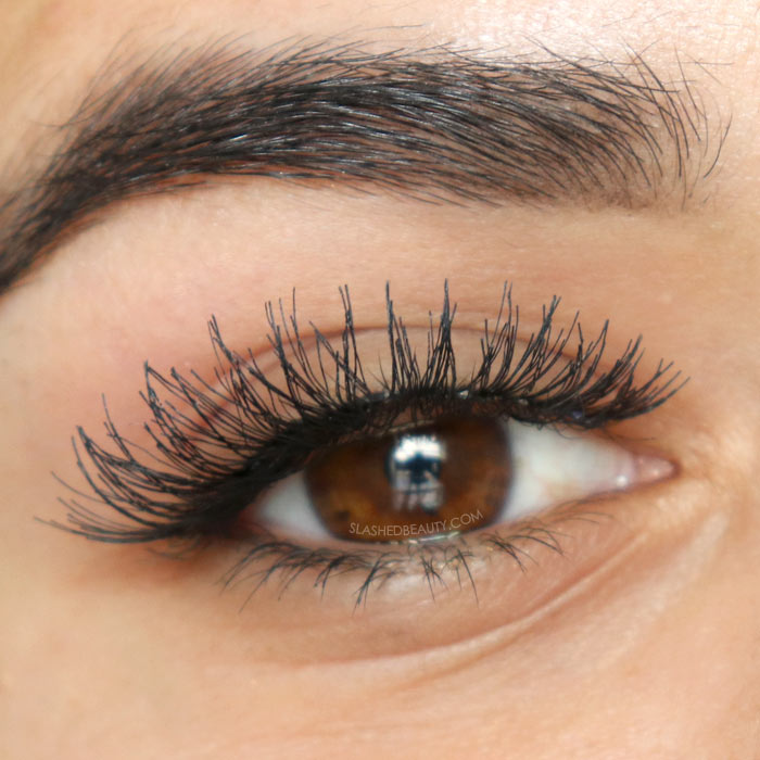 Best Budget Fake Lashes $5 and Under | Ardell Demi Wispies | Slashed Beauty