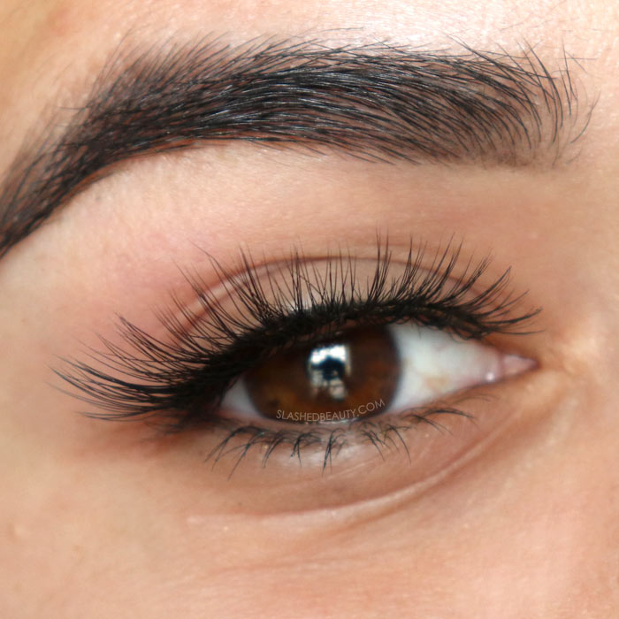639facbcc63 Best Budget Fake Lashes $5 and Under | e.l.f. Winged & Bold Luxe Lash Kit