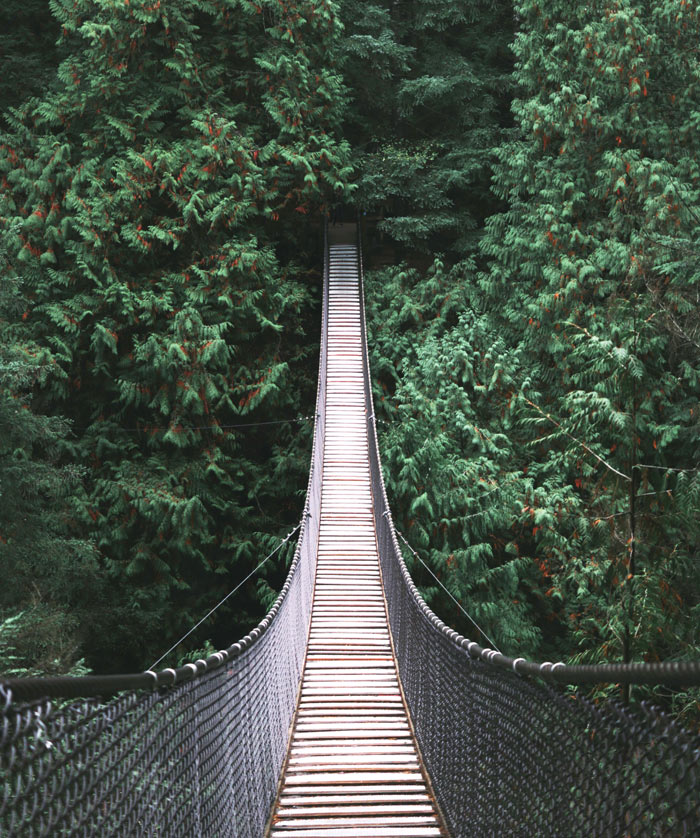 Cheap Things to Do in Vancouver: Cross as Suspension Bridge for Free in Lynn Canyon, or Pay to Visit Capilano Suspension Bridge | The Ultimate Budget Travel Guide to Vancouver | Slashed Beauty