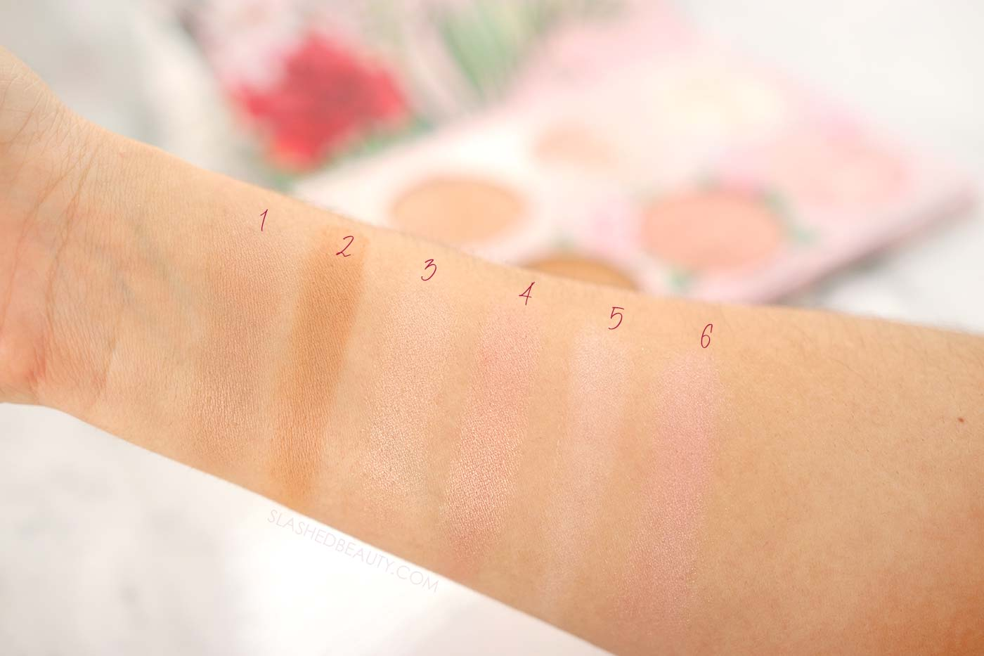 Physicians Formula All-Star Face Palette Swatches on Medium Skin | Slashed Beauty